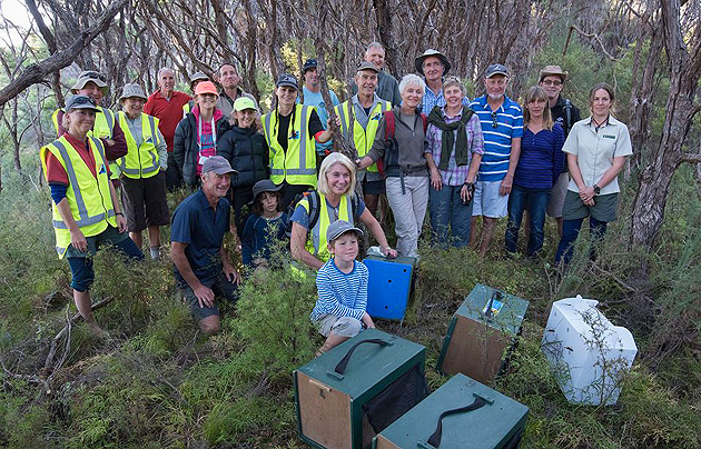 Abel Tasman Birdsong Trust Volunteers, Trustees and supporters welcome the Robins to their new home on Pitt Head. Credit: Ruth Bollongino